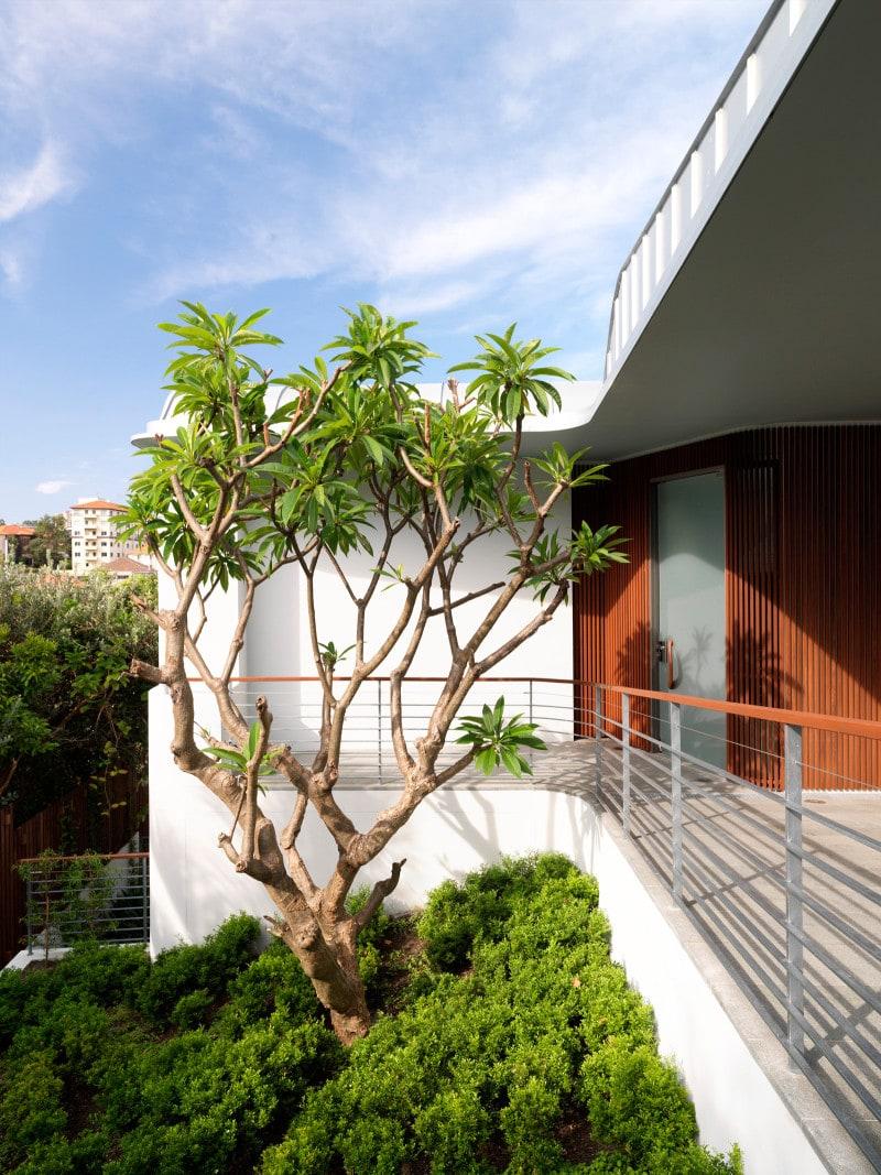 Luigi Rosselli, Tree, Courtyard, Balcony, Verandah, Terrace