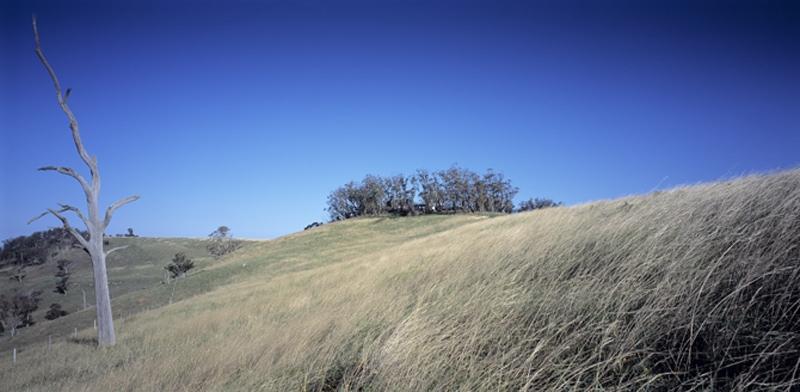 Luigi Rosselli, Mt Minderoo, Countryside
