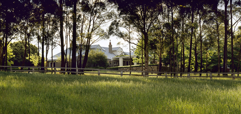 Luigi Rosselli, Southern Highlands, Trees, Grass Plains