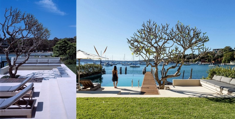 Luigi Rosselli, Frangipani Tree, Swimming Pool, Deck