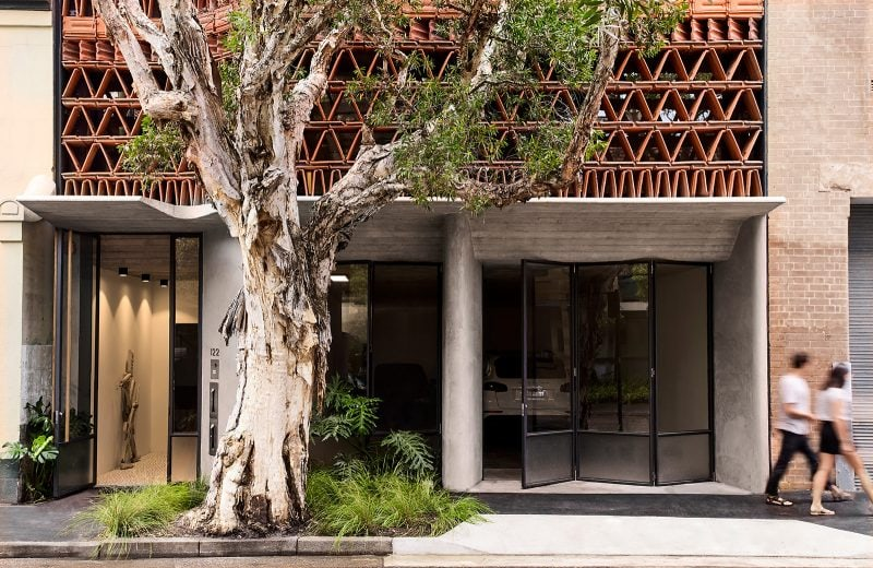 Luigi Rosselli Architects The Beehive studio exterior streetview with paperbark tree, Will Dangar garden, steel doors, boarded concrete awning and triangular terracotta facade