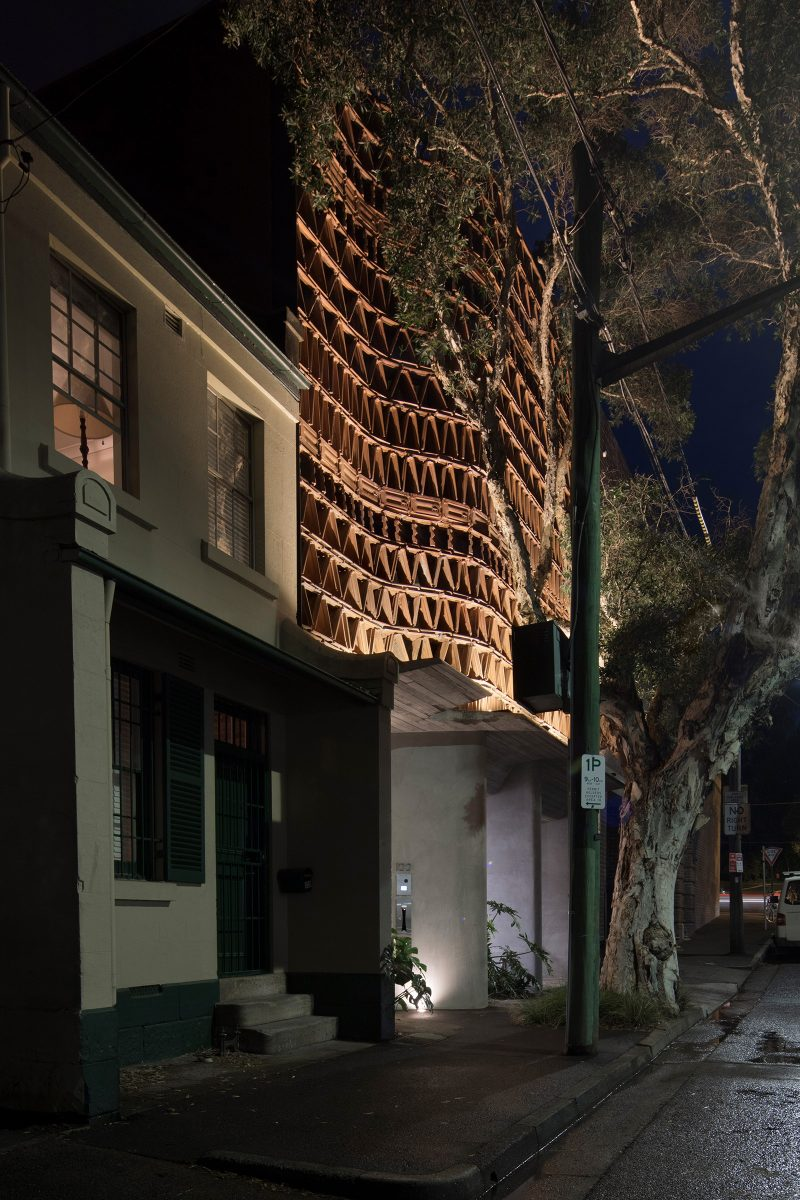 Luigi Rosselli Architects The Beehive Studio in Surry Hills externally lit recycled terracotta facade with shadow Play, Boarded Concrete Awning, Smooth Rockcote Acrylic Cement Render, Monstera, Shadow Play, paperbark tree