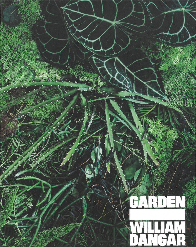 Luigi Rosselli Architects, William Dangar, Dangar Barin Smith, Garden, Garden Design, Landscape